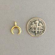 JSJ double horn coin